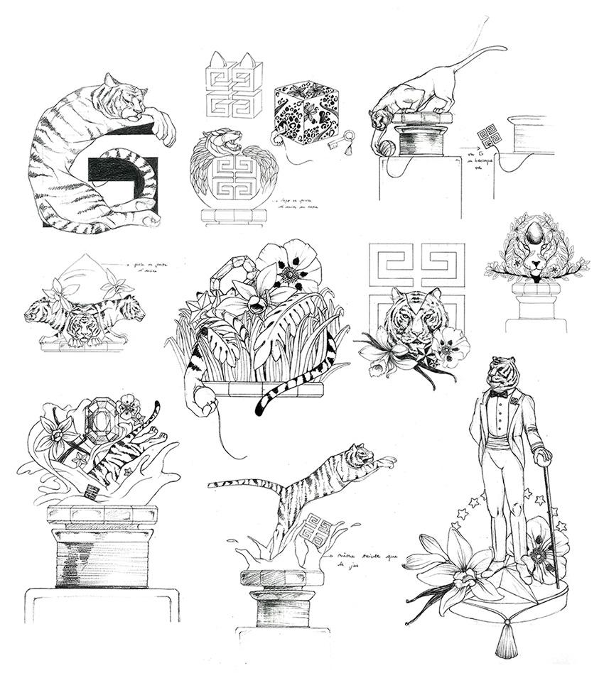 Croquis de recherches Collector Ambre Tigré